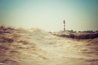 Amrum Impression 01 - Sugar Ray Banister